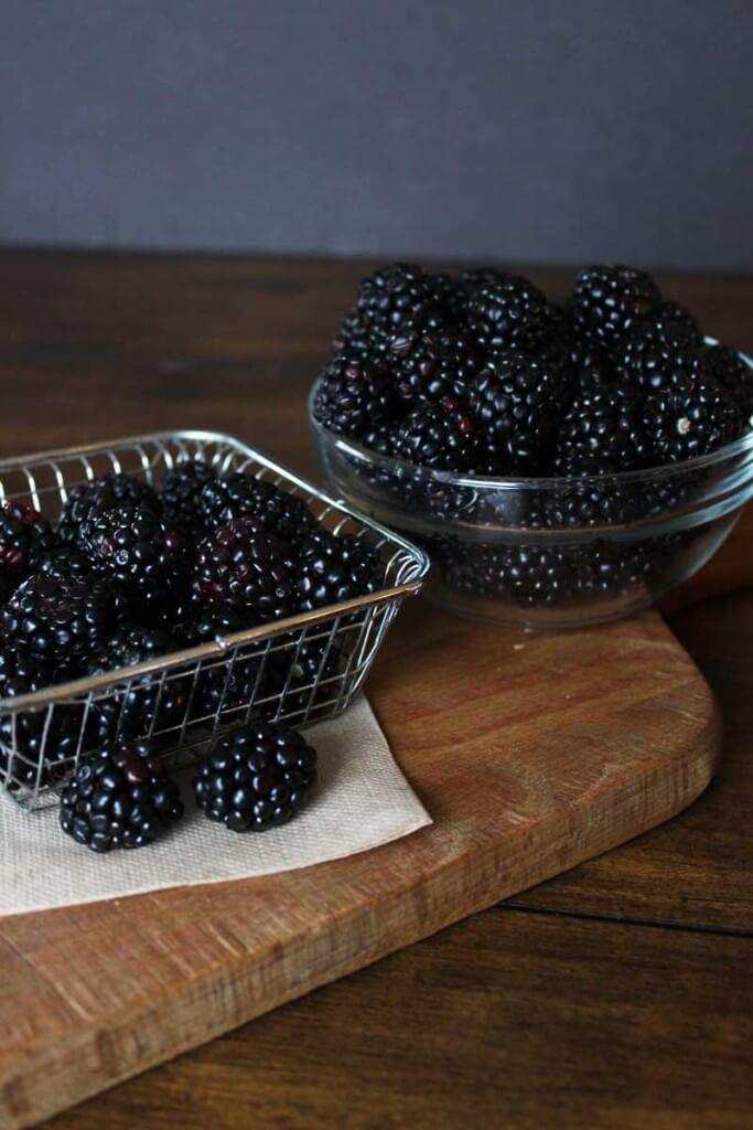 Rustic Blackberry Galette
